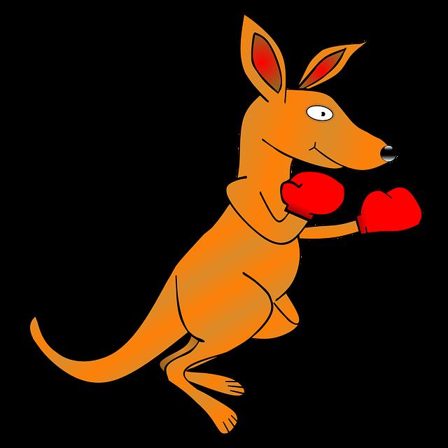 画像に alt 属性が指定されていません。ファイル名: kangaroo-fight.png